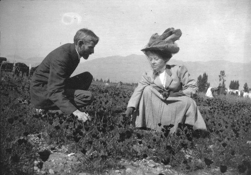 Mrs. Curtin and Mr. Brown in Poppy Fields