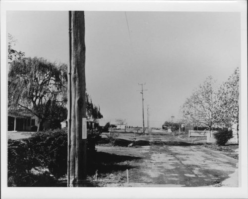 Looking west on Terry Road from house no. 1944, Santa Rosa, California, 1967