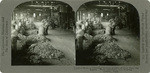 Wool 2. - Sorting various grades of wool from the fleeces. West Alhambra, Los Angeles, County, Calif., 116