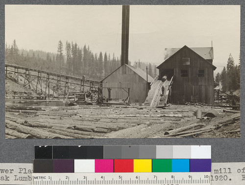 Power Plant, Pond, refuse chain and front end of mill of Spanish Peak Lumber Company, Meadow Valley, California. August, 1920. E.F