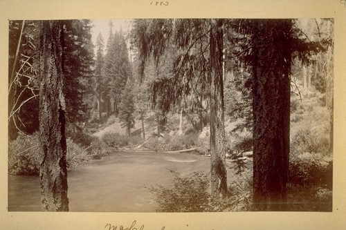 McCloud river. 1883