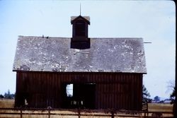 Old barn on West College Avenue, Santa Rosa, California, 1979