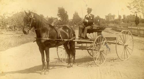 Man with Horse Carriage