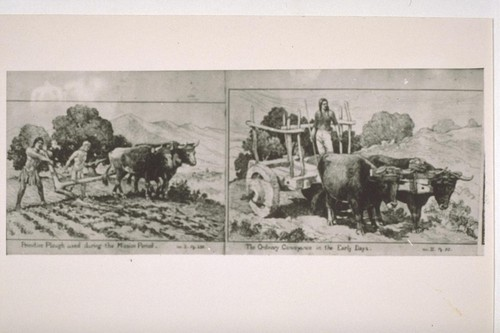 Copy of pen sketches of Mexican plow and cart. Taken at Santa Barbara Mission in 1944