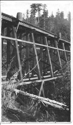 Northwestern Pacific (NWP) narrow gauge trestle near Occidental, California