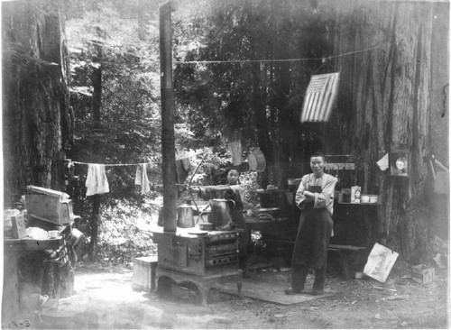 Chinese Americans in redwoods