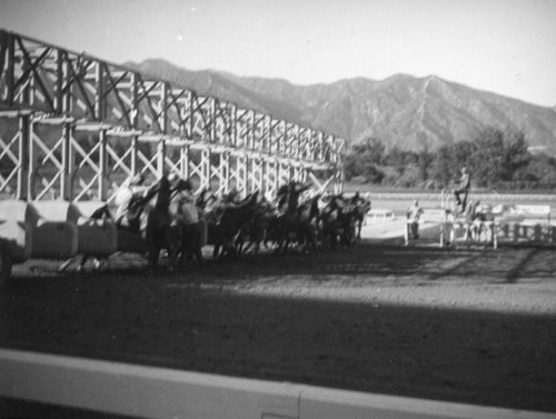 Starting gate at Santa Anita Racetrack