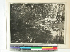 Spring water in the forest, Ranozaza, Amboboke, Madagascar, 1935