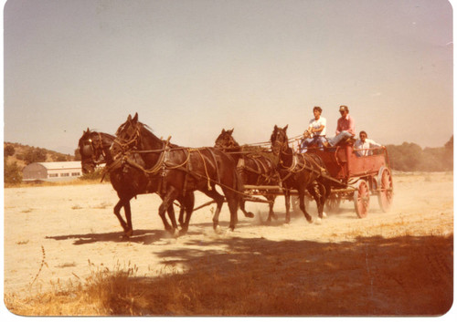 Chuck Waters training on horse-drawn wagon
