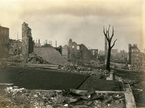 Looking south to east from Bush and Jones Street, San Francisco Earthquake and Fire, 1906 [photograph]