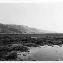 Photographs of landscape of Bolinas Bay. Bolinas Lagoon