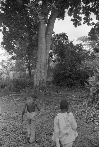 Two boys walking in the forest, San Basilio de Palenque, 1976