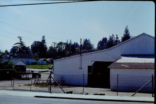 Rear of Columbo Lumber Company on South Main Street at Palm Avenue and Petaluma Avenue in Sebastopol, California, April 1978