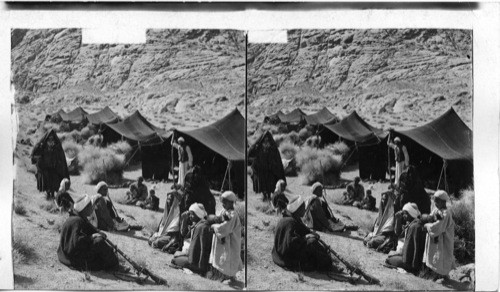 Calisphere: A Bedouin Camp on the Israelites old ground at base of