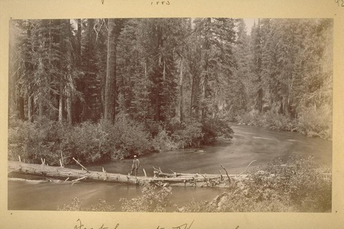 Foot log at Horse shoe. McCloud river. 1883