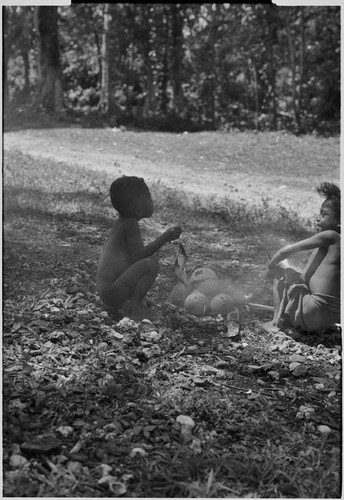 Young boys sit by small fire on which they heat some coconuts, child at left holds string of small fish