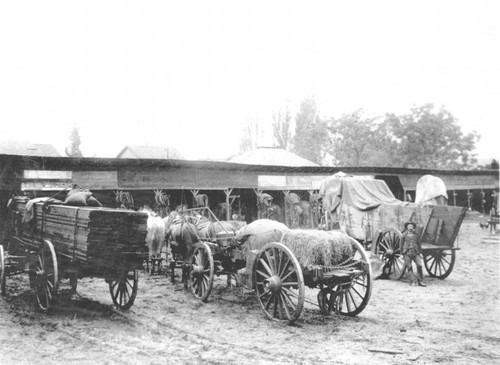 Oroville corral