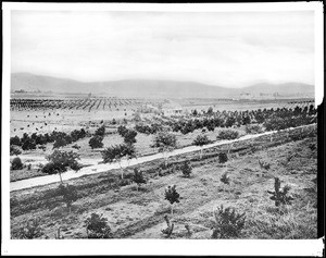 Panorama of Pasadena, looking west from Marengo Avenue, 1882