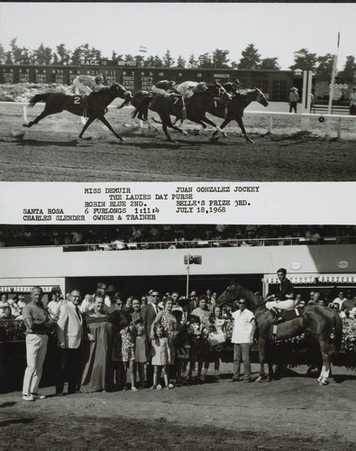 Photo finish and Winner's Circle for the Ladies Day Purse at the Sonoma County Fair Racetrack, Santa Rosa, California