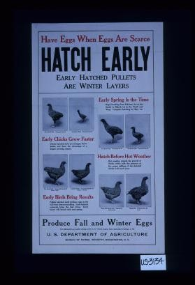 Have eggs when eggs are scarce. Hatch early. Early hatched pullets are winter layers ... produce fall and winter eggs
