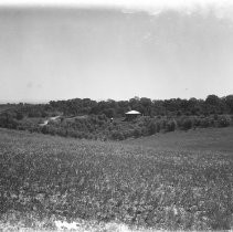Exterior view of farmland and a house in Fair Oaks
