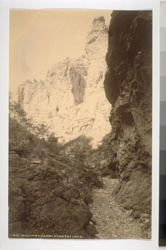 Williams' Canon, Near the Cave [Colorado?]. 412
