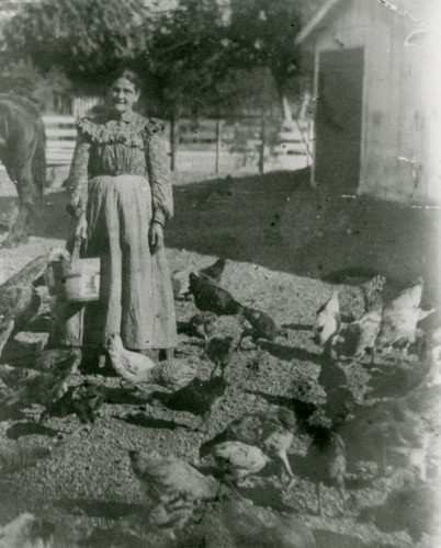 Jesusita Bernal feeding chickens