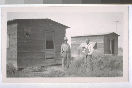 July, 1936, Kern County, Kern Lake District. One of the Banducci Ranches. Typical laborer cabins. Note the crude structure, broken screen doors, and weeds in front