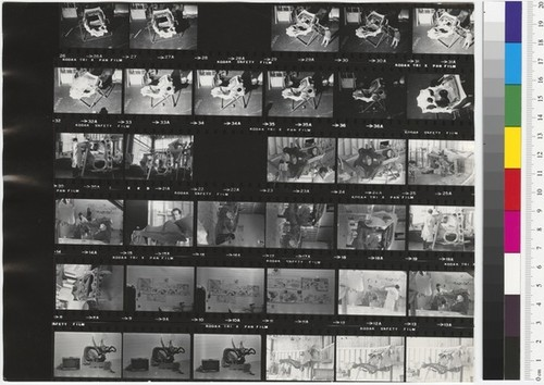 Calisphere: Contact sheet (Dol...
