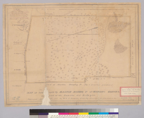 Map of land bought by Martin Murphy Jr. of Mariano Castro, being part of the Rancho del Refugio : [Rancho Pastoria de las Borregas, Santa Clara Co., Calif.] / Surveyed by Wm. J. Lewis, County Surveyor ; drawn by S. Day