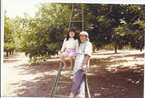 Kikue Morita and her granddaughter in the Morita apple ranch in Sebastopol, circa 1980