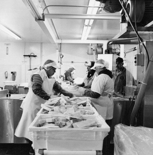 Handling frozen fish at State Fish Company