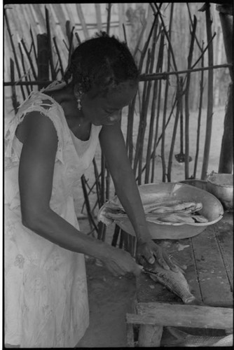 Young Woman Cleaning Aquarium With Beta Fish At Home
