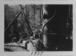 Bill Arnold's Dolbeer steam donkey used for logging, Occidental, 1937