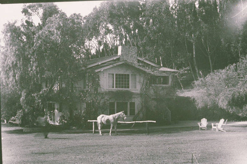 Will Rogers' horse Soap Suds in front of the main house at Will Rogers State Park, Rustic Canyon, Calif