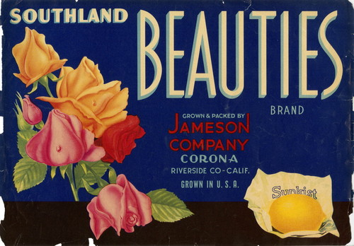"Crate label, ""Southland Beauties Brand."" Grown and Packed by Jameson Company, Corona, Riverside Co., Calif"
