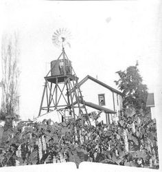 Todd District Ranch, Morris Whitham and Melvin on tank tower, about 1920s