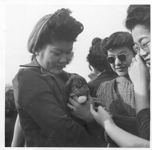 A group of girls who are residents at this center and a puppy at a football game. Photographer: Parker, Tom McGehee, Arkansas