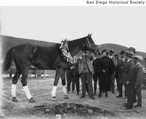 Racehorse Exterminator wearing a flower collar with Mrs. Ulysses S. Grant, Jr., trainer Henry McDaniel and others