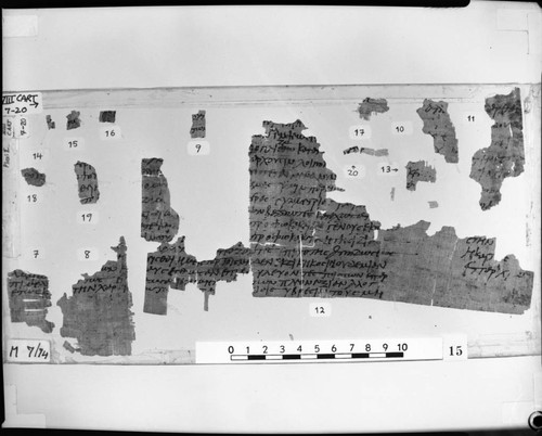 Codex VIII cartonnage fragments 7-20
