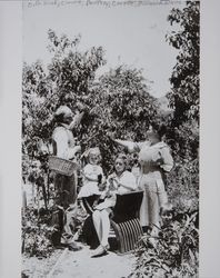 Octavius G. Wood and the White family in the orchard, Petaluma, California, about 1916