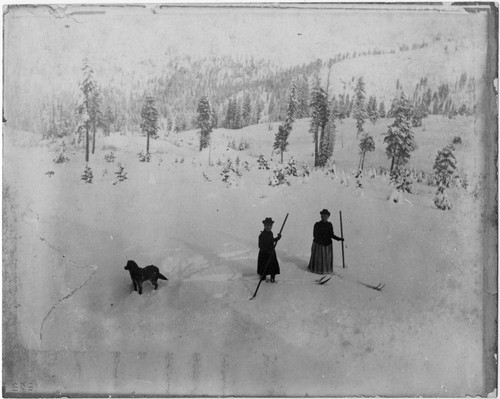 Two women skiing in deep snow, with dog