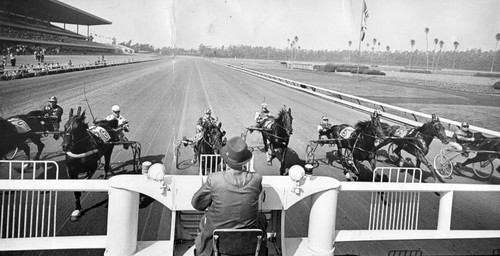 Hollywood park harness racing