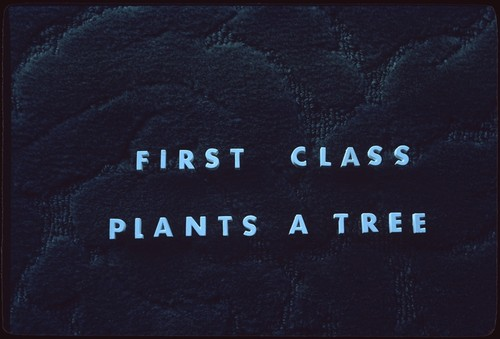 """First Class Plants a Tree"" [title slide]"