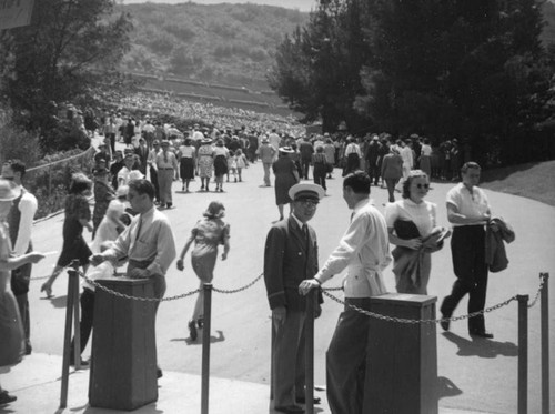 Taking tickets at the Hollywood Bowl