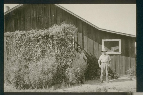 No. 204. Lee boys, allotment 207, August 14, 1923
