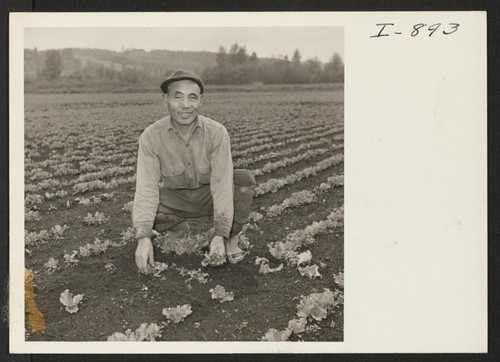 K. Funai was the first old timer to return to his farm near Woodenville, Washington. He was at the Minidoka