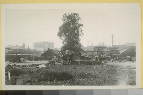 Chinese shacks rear of So. Alameda, at Apaplasa St. showing new Hall of Justice in distance