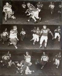 Analy High School Tigers football team of fall 1950--the Analy Tigers vs Vallejo on Friday, October 20th, 1950
