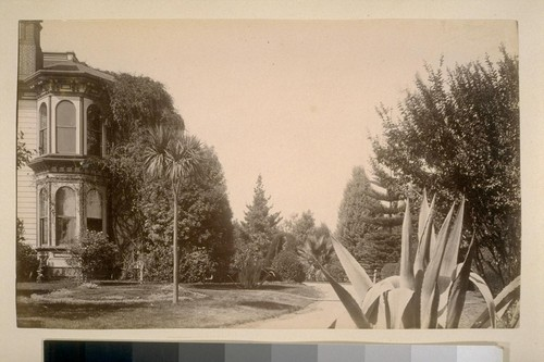 [Victorian house and garden with palms and yucca or cactus]
